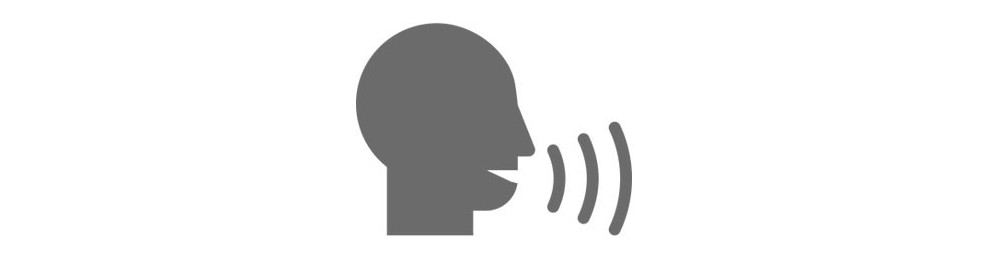 Voice Control Software